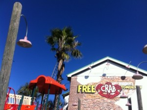 Joe's Crab Shack trees receive tree care.