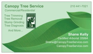 Canopy Tree Service Business Card
