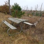 Bastrop Picnic Table Flimsy